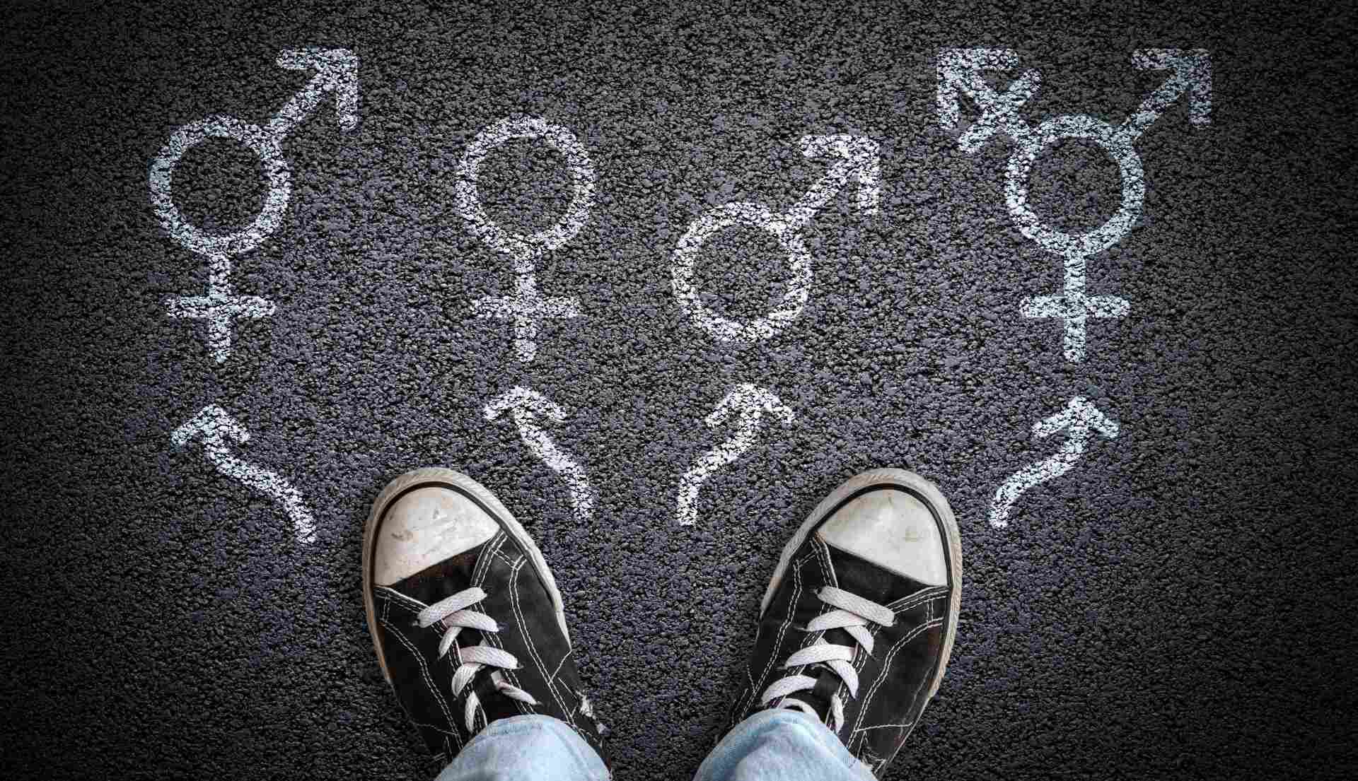Gender Identity & Gender Role SDC.com