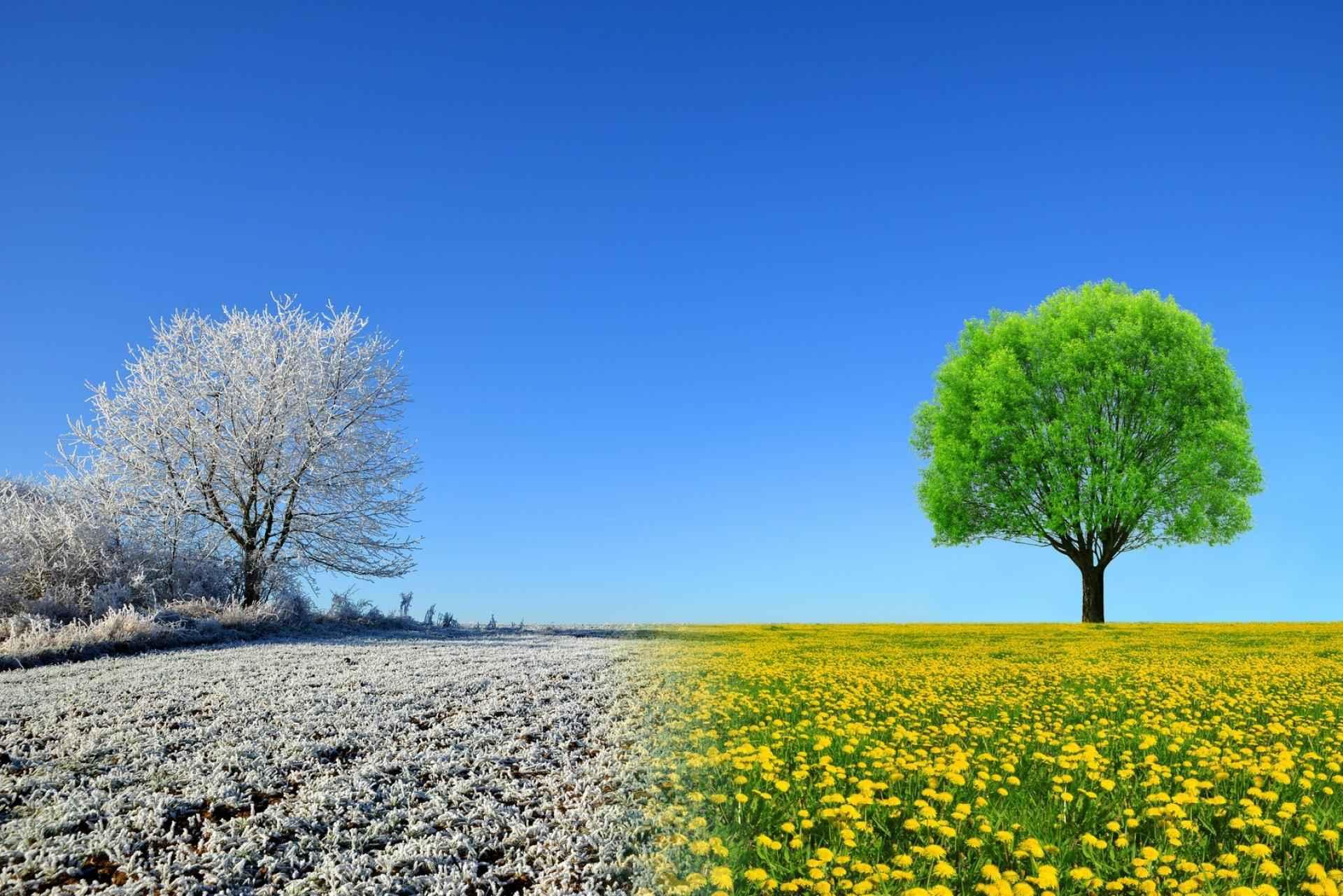 Ist die Energie einer neuen Beziehung ein Grund zum Betrügen? SDC.com