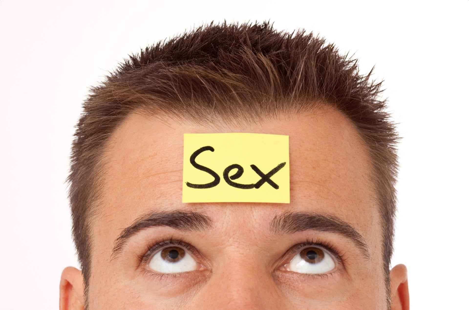 Sex und das Gehirn SDC.com