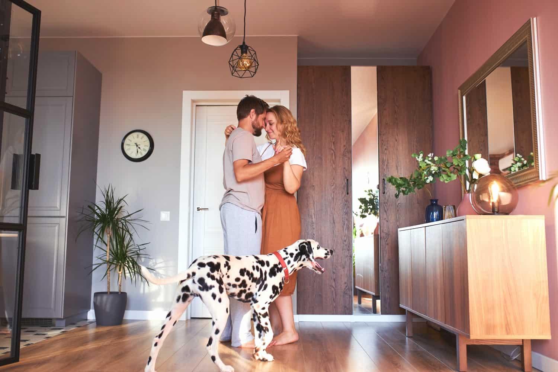 Help?! Mijn huisdier verpest mijn seksleven! 🐾