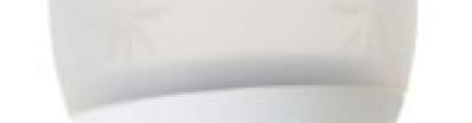 Review: Iroha Ukidama Bath Light & Massager