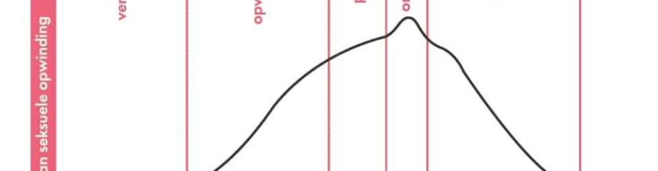De seksuele responscyclus – verschillende fasen van seks uitgelegd